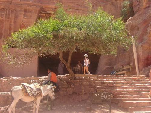 Jordania - Petra. Zaginione miasto. 340r pne.