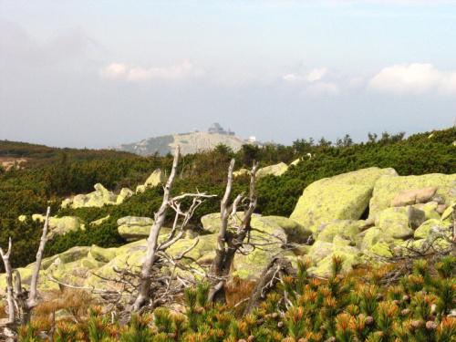 Karkonosze 2006 #Karkonosze #góry #krajobrazy #natura #turystyka