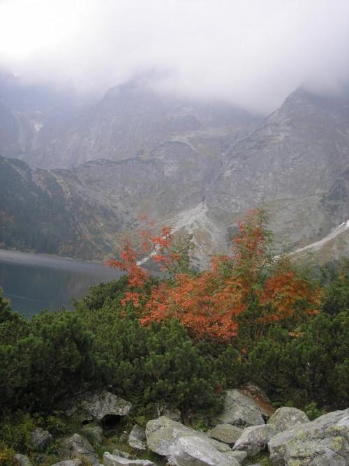 #MorskieOko #Góry #Tatry