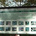 W Rezerwacie Piskory #Piskory #rezerwat #tablica