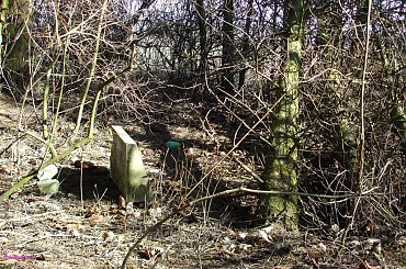 Giętkie - nieczynny cmentarz ewangelicki