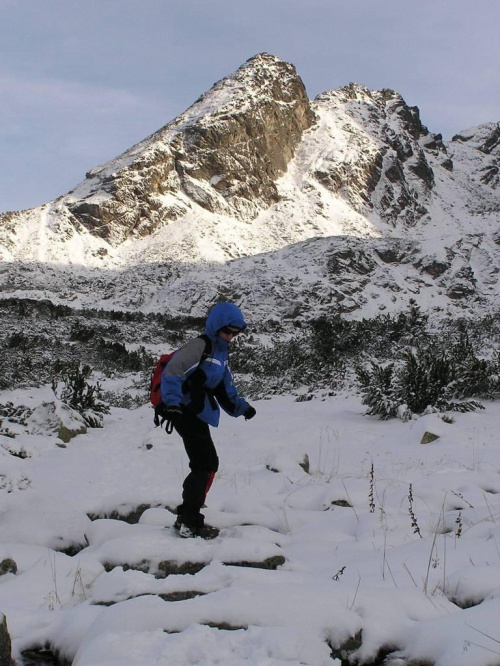 w cieniu Tatr . UpS strumyczek :) #góry #Tatry #Zakopane