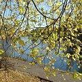 jesienny spacer nad Brdą #NadRzeką