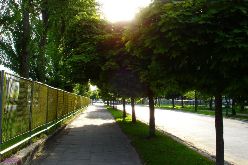 Pisz - ul. Kwiatowa