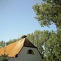 bocki Bornheim #gniazdo #obserwacje #bociany #bornheim