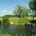 Kurówka w okolicy Brzozowej Gaci #Kurówka #rzeka #BrzozowaGać
